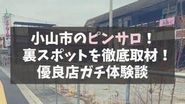 【最新】小山市のピンサロ・エステ店すべてを徹底紹介!裏風俗はある!?